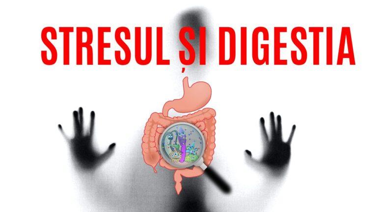 Relatia dintre stres si digestie